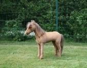 Pferd - braun - XXL Kuscheltier - Mähne + Schweif Nordlandschnucken-Fell (Echtfell) - - Plüschtier von Steiner - handgefertigt in Deutschland - XXL Kuscheltier